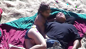 Beach Safaris