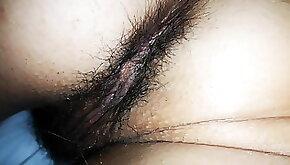 Hairy holydays